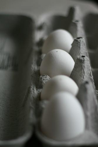 2011_04_20 041