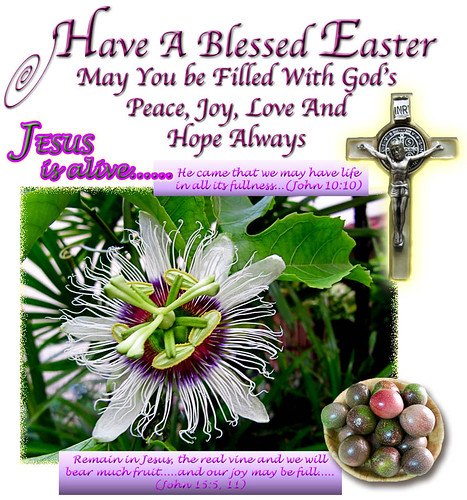 An Easter 2011 greeting card with images of a crucifix & a flower+fruits of the Passiflora edulis (Passion Fruit) vine