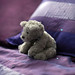 Teddy bear resting alone - bokeh panorama