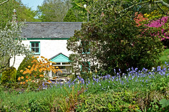 Cottage Garden at Ponsanooth by Tim Green aka atoach