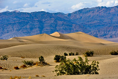 Mesquite Flats Sand Dunes, Death Valley (John Petrick) Tags: landscape delete5 delete2 sand day cloudy save3 delete3 save8 delete delete4 save save2 save9 save4 deathvalley save5 save10 save6 sanddunes deathvalleynationalpark 18200mm d90 kartpostal deathvalleylandscape mesquiteflatssanddunes sanddunelandscape savedbythehotboxuncensoredgroup mesquiteflatssanddunesdeathvalley mesquiteflatssanddunesindeathvalleynationalpark