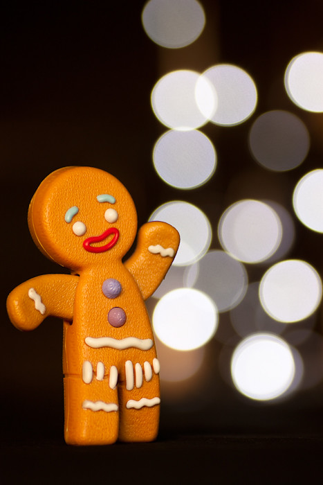 The one good thing that came out of McDonald's was Gingy with a touch of bokeh