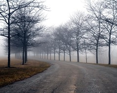 The Bend (ICT_photo) Tags: morning mist fog way bend dive ictphoto ianthomasguelphontario