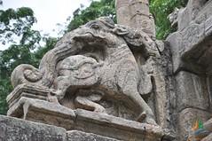 Korawakgala (Balustrades -  Yapahuwa) (lakpuratravels) Tags: balustrades yapahuwa korawakgala
