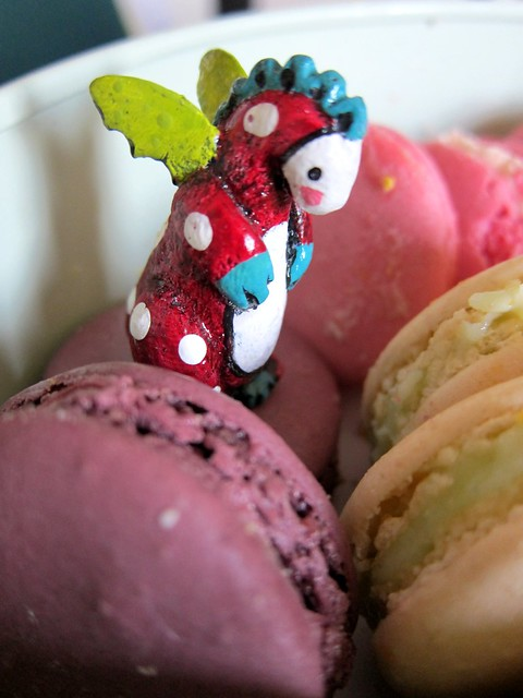 Poppzilla is choosing a macaroon