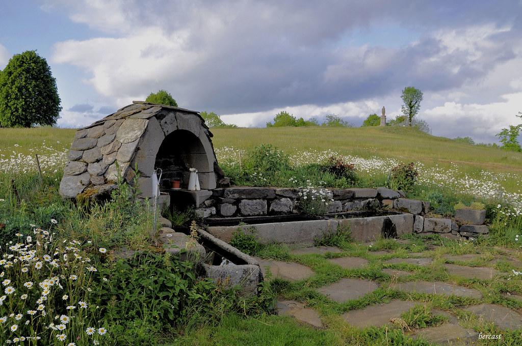 VINES-Haut-Aveyron.source-abreuvoir.05-2011