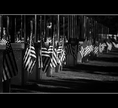 We Remember (C. Dastodd) Tags: okc memorialday