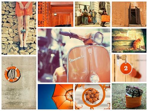 { naranja en tu ciudad }