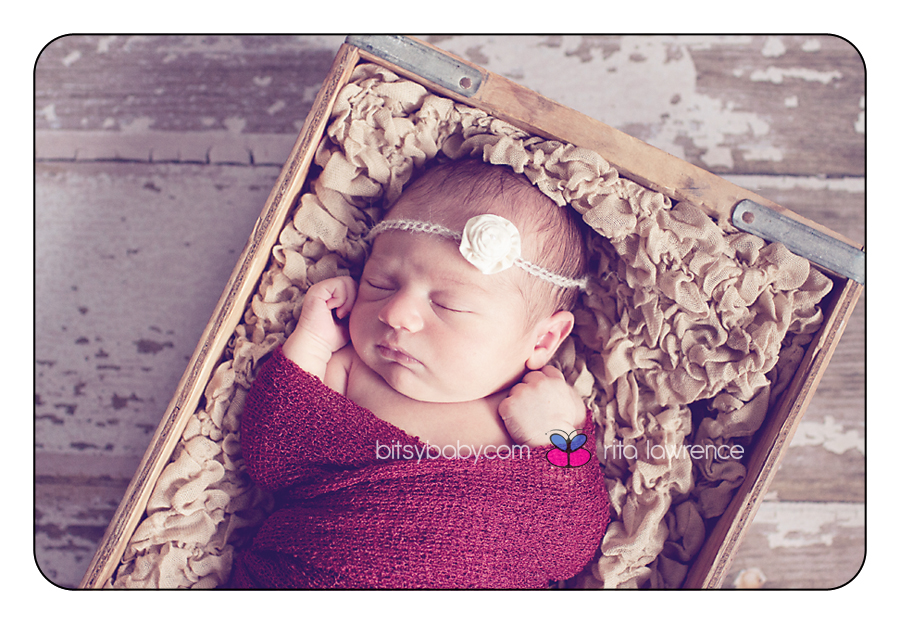 newborn baby photogrphy Sophia