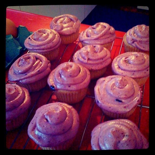 Cupcakes - ICED!
