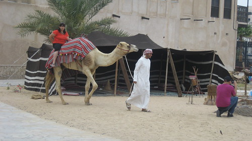Camel at Bastakiya
