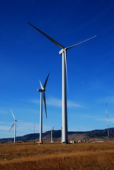 Prairie Wind (Let Ideas Compete) Tags: blue sky moon tower fun colorado energy technology wind awesome spin windy spinning essence blade grassland propeller turbine turning blades renewable opinion turbines nacelle greenenergy highthings tallthings nrel openarea globalwarmng locomotiveonastick