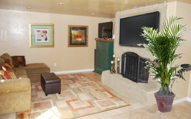 flatscreen tv on  fireplace with plant