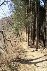 入山峠から市道山への道