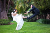 Don't Piss Me Off! (Extra Medium) Tags: green grass groom bride bravo kick husband karate tuxedo wife weddingdress tux santabarbaracourthouse sooc santabarbaraweddingphotographer