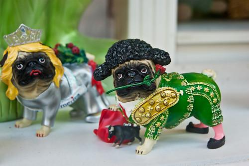 Torero Dog