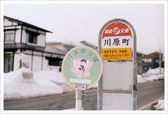 (marcma /  /) Tags: snow film japan olympus   om1n   marcism