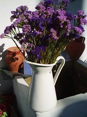 Quintal (SMAC colours) Tags: flores casa country campo decoração cor móveis objectos showyourhouse gardenhome inspirações