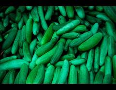 Cool Cucumber (Pattugrapher) Tags: india vegetables market bazaar hyderabad sell rythubazaar