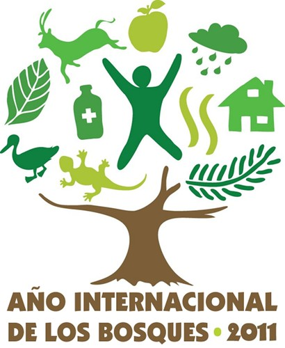 ONU-año-internacional-de-los-bosques-2011