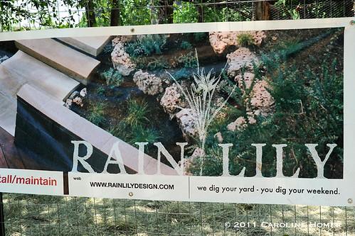 Rain Lily Farm