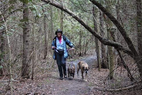 Jones Falls Mini-hike - On the Trail