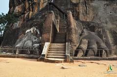 Lion foot at Sigiriya