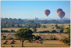 Balloons over Bagan (Pagan) | Myanmar (Burma) (I Prahin | www.southeastasia-images.com) Tags: travel blue sunset mountains tourism sunrise golden amazing raw burma buddhist balloon save3 save7 save8 delete save save2 unesco adventure save9 save4 temples fields myanmar save5 save10 save6 archaeological plain pagan bagan worldheritage oxcart balloonsoverbagan ayeyarwaddyriver easternsafaris gettyimagessoutheastasiaq2 savedbythehotboxgroup