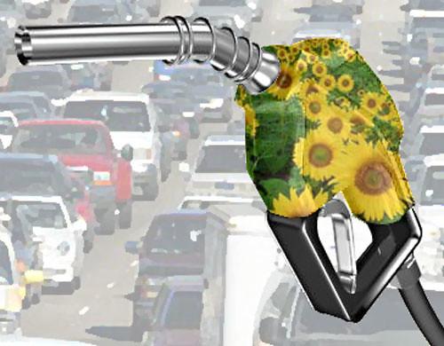 biodiesel-manguera-surtidor