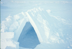 Snow house of Weber & Holloway (Weber Arctic Expeditions) Tags: ice richard misha weber northpole frostbite arcticocean polarexpedition malakhov wardhuntisland fischerskis polarbridge polartraining capearkticheskiy dimitrishparo shparo