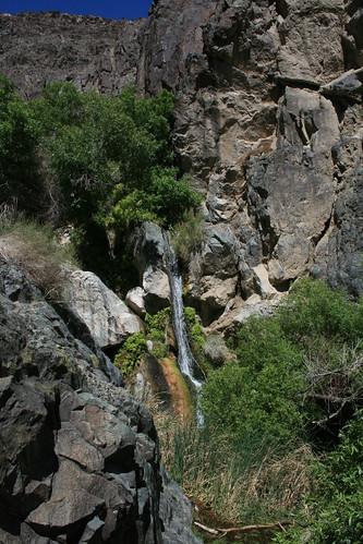Darwin Falls #1