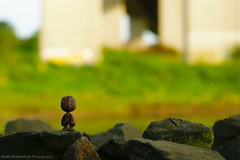 under the bridge (keith_r_rutherford) Tags: bridge ireland game river toy sony londonderry northern derry foyle a390 doire sackboy