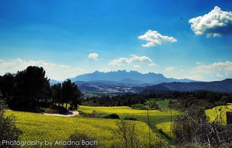 2011-04-17 Manresa-Castellgali-Manresa 16km (10)