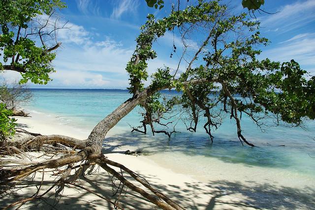 Bandos beach scene