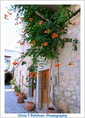 Streets of Mesta,Chios (CTPPIX.com) Tags: old trip travel summer vacation flower building architecture canon island greek eos town tour village urlaub aegean hellas greece journey 7d gr ctp excursion 2010 chios griekenland trumpetflower griek hios hellenic greekisland dailytrip xios sakiz medievalvillage mesta grek khios christpehlivan ctppix sakizadasi xioy kanaristour northchiostour
