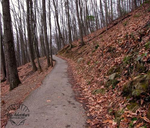 Laurel Falls Trail watermark