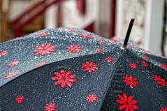 Red flowered umbrella (le cabri) Tags: red summer black hot flower water rain closeup umbrella droplets day atmosphere drop rainy delicate parapluie