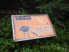 20110602酷節能體驗營 (28) (fifi_chiang) Tags: zoo taiwan olympus taipei ep1 木柵動物園 17mm 環保局 酷節能體驗營