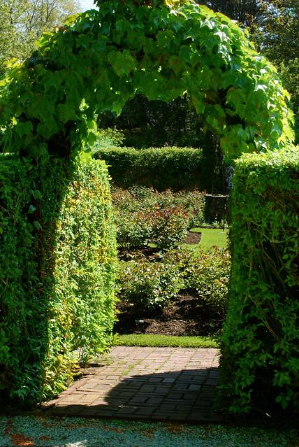 ivy entrance to fuller
