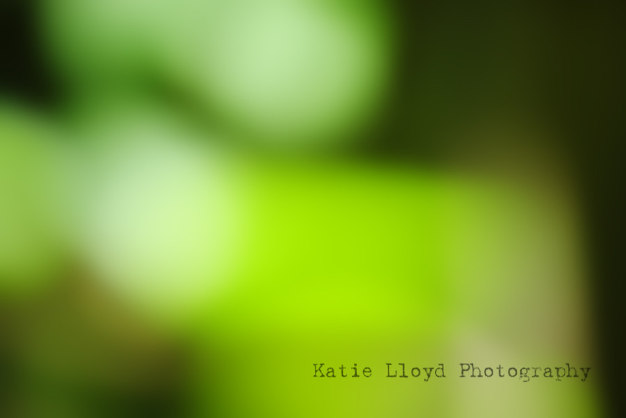 Green-abstract---full-frame