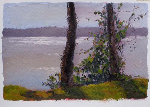 20110624 Potomac River Series 16