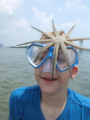 Jakob & starfish