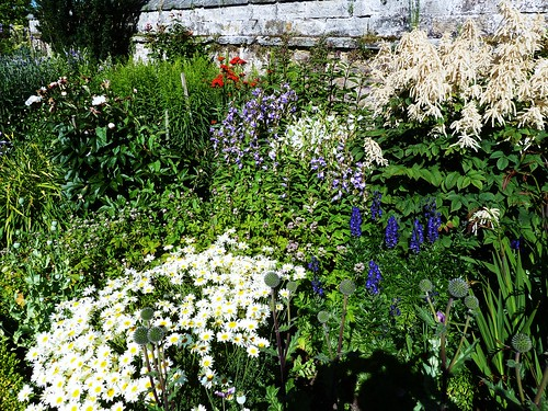 Herbaceous Border, Dirleton Castle