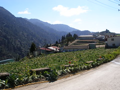 Lihsing Industrial Road (l0001_2001) Tags: hiking taiwan mountain  89