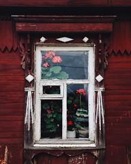 (KLokteva) Tags:      ulyanovsk house old flower wood red window