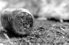 pebble jar (marissa elkind) Tags: blackandwhite bw detail slr film glass grass closeup darkroom 35mm blackwhite rocks dof bokeh minoltax700 trix perspective naturallight pebbles dirt masonjar 35mmfilm shutter jar glassjar shallowdof bwfilm blackandwhitefilm 50mmlens balljar wetprint