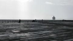 A Grey Day (El Stevo13) Tags: ocean voyage seattle travel viaje cruise sea grey harbor pier mar washington ship pacific northwest gray sound sail puget