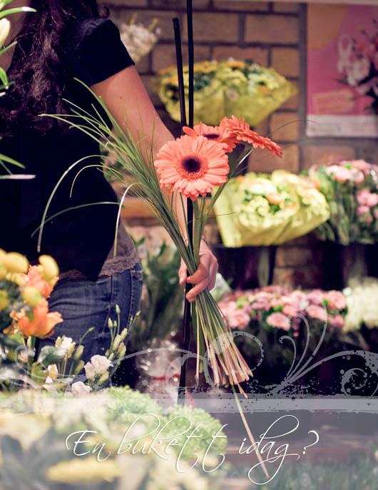 20111112_namnlöst_0229-Redigera.jpg