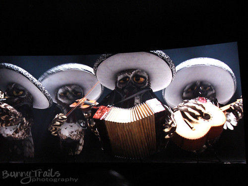 78 - mariachi band