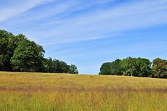 Valley Forge (Rubicon Explorer) Tags: sky usa tree field grass nationalpark pennsylvania meadow hay valleyforge